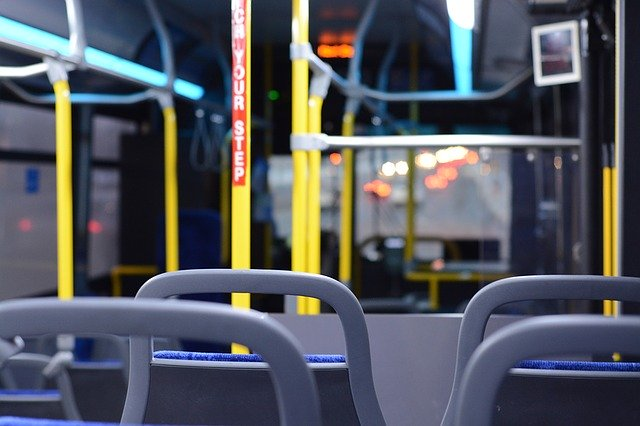 bus buses