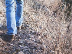 hike hiking walk