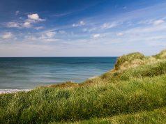 coast sea beach